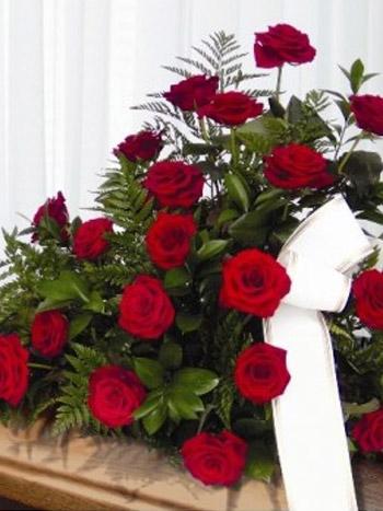 Centrode 24 rosas