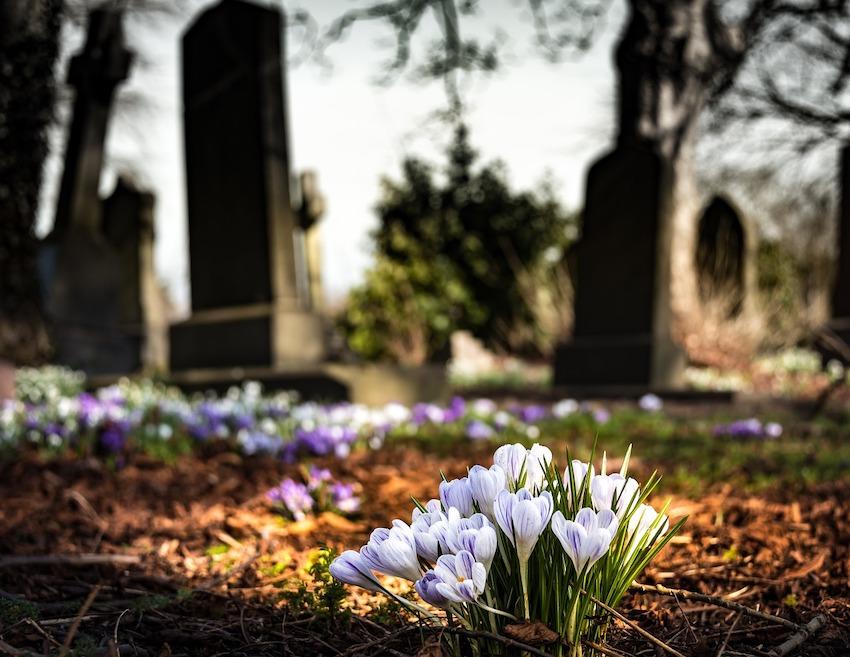 Cómo hacer una jardinera de flores para cementerio paso a paso