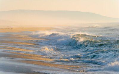 Cenizas en el mar: ¿qué dice la legislación?